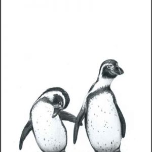 penguins pencil drawing print