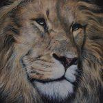 Male lion painting wildlife art realism