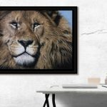 male lion pastel art wildlife drawing artist Julie Rhodes
