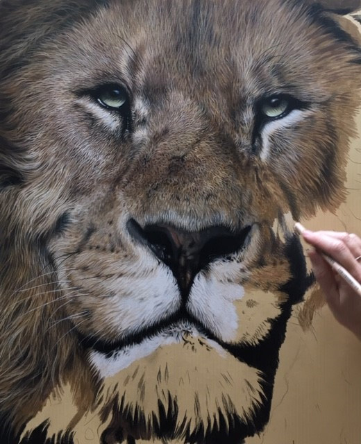 how to draw a realistic lion pastel