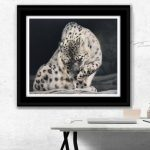 snow leopard - snowleopard pastel drawing painting by Wildlife artist Julie Rhodes