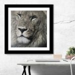 Pastel drawing painting of male lion wildlife art by Julie Rhodes