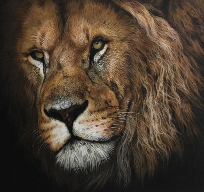 male lion pastel art drawing
