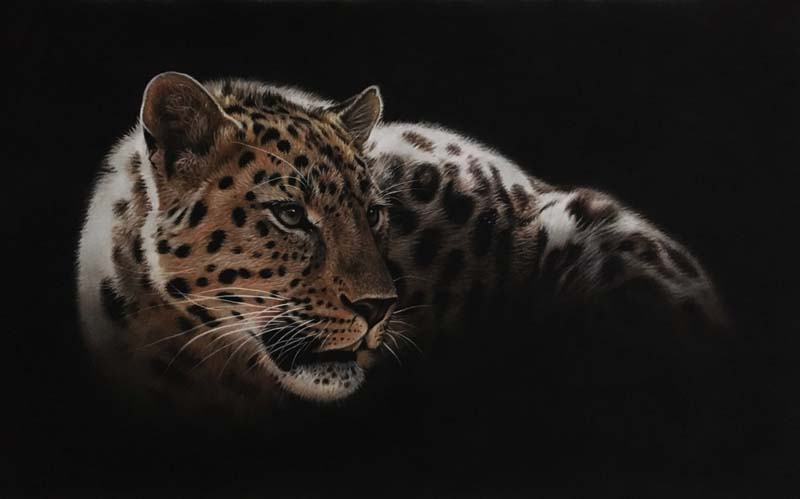 leopard pastel drawing painting