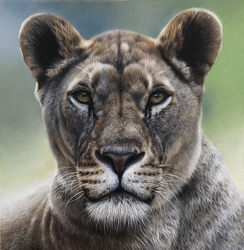 nala, lioness pastel artwork drawing