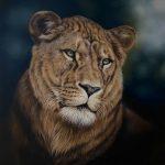 tilight blue pastel drawing lioness wildlife art