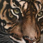 detailed tiger art realism, hyperrealistic